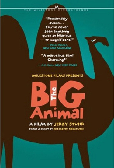 The Big Animal